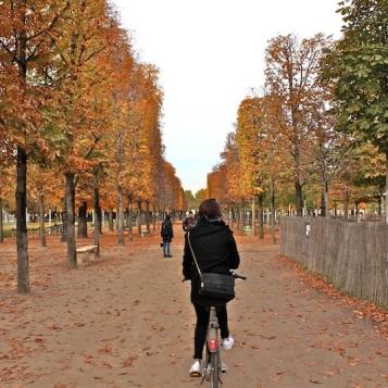 By bike in Les Jardin des Tulieres