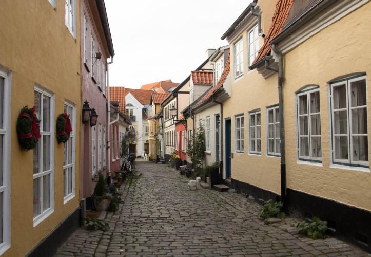Aalborg_fall-1