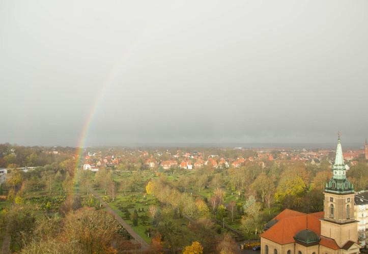 Aalborg_fall-5