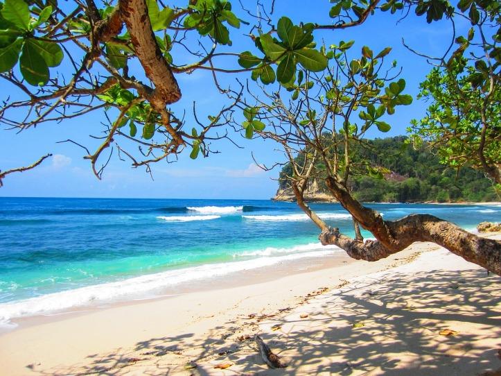 beach-2123440_1280