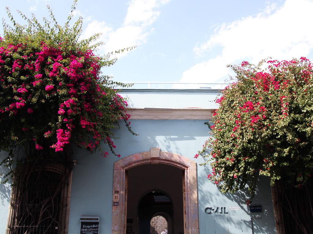 Hotel Casa Azul Oaxaca